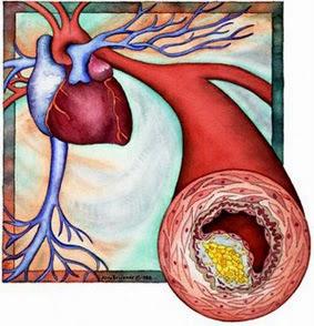 taux de cholestérol normal